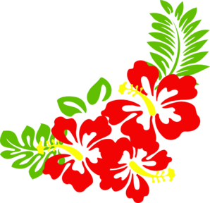 hibiscus-nat-md.png