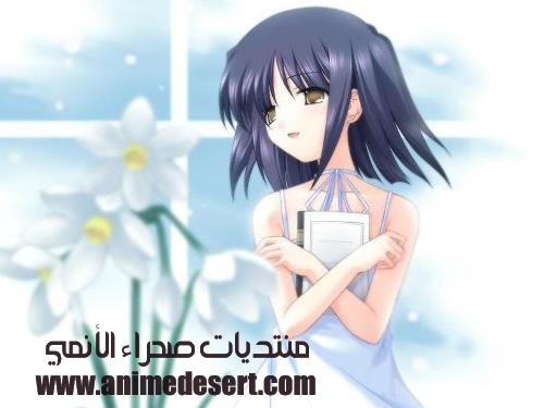 n4hr_13710384563.jpg