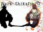 SHIKIMARU